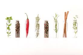 Phytogenic feed additives - the future in animal nutrition