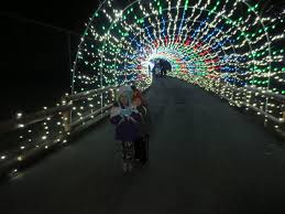 Lv Zoo Lights Welcoming In 2015 Chipndale Runner Go Nuts