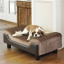 dog bed furniture. Dog / Pet Bed Elevated Contour Medium Size Contemporary Furniture Style Sofa Day T