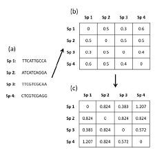 Simple Example Of Distance Matrices Computed From The