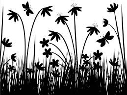Black And White Flowers Wallpapers Hd Soidergi