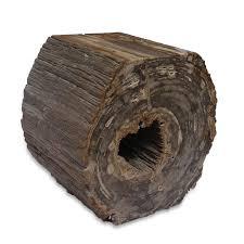 Petrified Wood Horizontal Stump ...