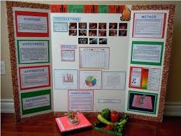 examples of poster board projects science projects display boards science project popcorn science fair