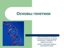 Самостоятельная работа по генетике Самостоятельная работа по биологии на тему генетика