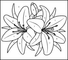 Small Picture Color By Number Coloring Pages For Adults Lily Printable Color