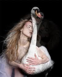 Resultado de imagen para leda y el cisne