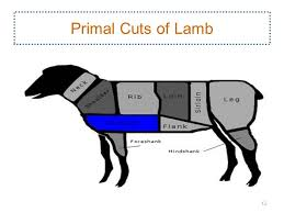 lamb primal cuts.  Cuts Lamb Breast Can Also Be Used For Making Ground Lamb 11 Primal Cuts Of In