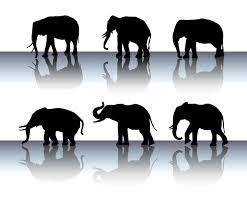Vectors Silhouettes Elephant Silhouette Vector Set Vector Art Graphics Freevector Com