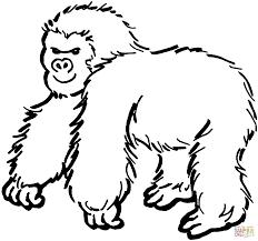 Harige Gorilla Kleurplaat Gratis Kleurplaten Printen