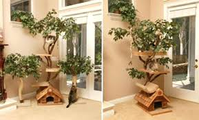 cool cat tree furniture. Cool Cat Tower Back To Outdoor Furniture Built Your Own Cheap Towers Uk . Tree