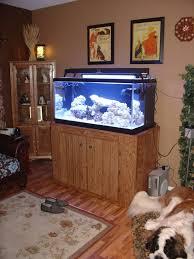 fish tank stand design ideas office aquarium. Aquarium Furniture Design. I Design Fish Tank Stand Ideas Office