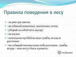 Презентация на тему Тема Правила поведения в лесу Цель  4 Правила поведения