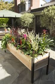 planter boxes standing height cedar raised garden plant box