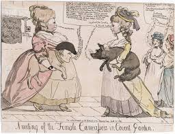 women in th century politics election all things n a meeting of the female canvassers in covent garden