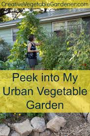 Kitchen Gardening Tips 17 Best Images About Organic Kitchen Gardening On Pinterest