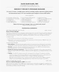 Resume Sample Doc Custom Quality Assurance Lead Resume 60 Project Manager Resume Sample Doc