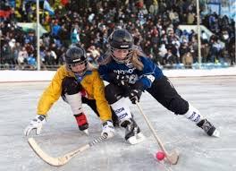 Ставка на хоккей бесплатно
