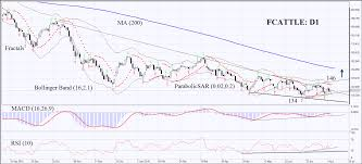 C Fcattle Commodities Cattle Technical Analysis July 19