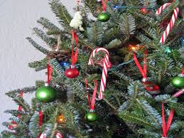 Candy Canes On Tree  InhabitotsChristmas Tree With Candy Canes