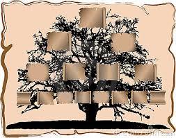 Resultado de imagem para genealogia fotos