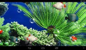 Download Aquarium 3d Live Wallpaper For ...