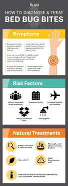 Bed Bug Bites: Symptoms, Facts \u0026 Natural Treatments - Dr. Axe