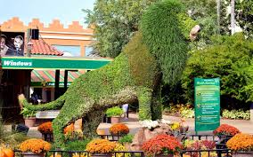 busch gardens tampa vacation packages. Modren Vacation Topiary Lion At Busch Gardens Tampa Entrance With Vacation Packages M