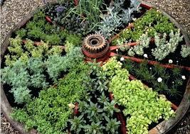 herb garden design famous wagon wheel herb garden design interesting herbs for most common ideas herb
