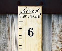 Diy Growth Chart Vinyl Pin On Arent We Just Crafty