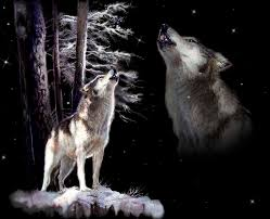 wolf howling painting. Plain Wolf Inside Wolf Howling Painting E