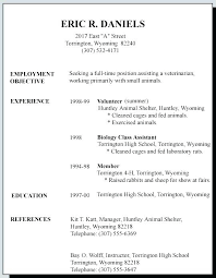 Federal Government Resume Format Stunning Federal Government Resume Format Resume Ideas
