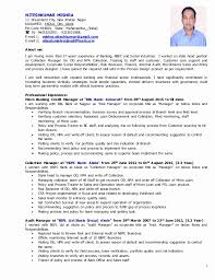 mis manager resume luxurious mis executive resume excel resume design