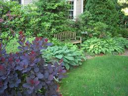 Small Picture Garden Landscape Ideas The Design Front Yard Landscaping S On