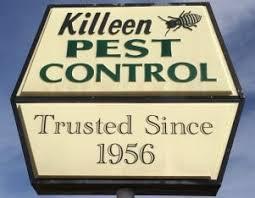 pest control killeen tx. Perfect Control Pest Exterminator  Killeen Control Inc In Killeen TX On Control Tx T