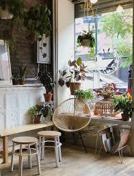 Plant Interior Design Impressive Decorating