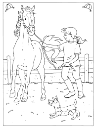 Kleurplaat Dressuur Wedstrijd Paard Dibujos Colorear Horse