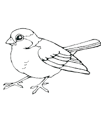 Coloring Pages Tweety Bird Coloring Pages Printable Free Realistic