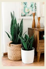 Otimize seu uso na sala de estar, cozinha, quarto e até no banheiro. 5 Ideias De Como Usar Palha Na Decoracao Da Sua Casa Steal The Look
