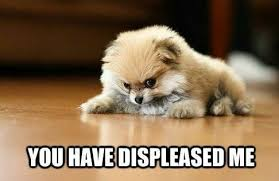 30+ Best Angry Dog Memes