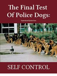 The Final Test Of Police Dogs Inspirational Quotes Guru SELF CONTROL Awesome Self Control Quotes