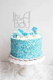 Boy Baby Photo A Boy Baby Shower How To Dye Your Own Sprinkles The Busy Spatula