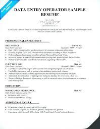 Basic Skills For Resume Computer Operator Resume Basic Computer Skills Resume Sample Data 65