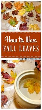 easy instructions for waxing fall leaves for autumn or thanksgiving decorations