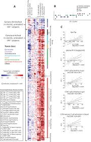 Dysbiosis Of The Gut Microbiota Is Associated With Hiv Disease ...