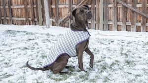 Fleece Dog Coat Pattern