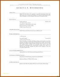 Cna Resume Summary Examples Resume Templates Cna Resume Templates Free Examples Resume 16