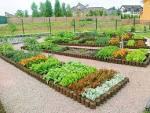 Сад и огород своими руками валерий украина 33