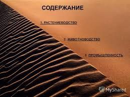 Презентация на тему СПб АППО Центр информатизации образования  ЖИВОТНОВОДСТВО 3 ПРОМЫШЛЕННОСТЬ