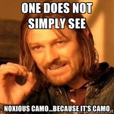 One Does Not Simply See Noxious Camo...because it's camo - one ... via Relatably.com