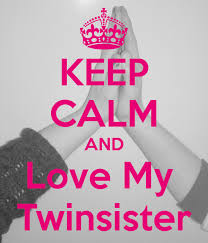 I Love My Twin Sister Quotes Gorgeous Love Quotes For My Twin Identical Twin Quotes Quotesgram Twin